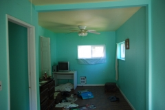 complete-house-remodel-and-painting-renton-006