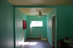 complete-house-remodel-and-painting-renton-007